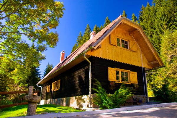 Apartmaji DANDI - Pohorska hiša 1