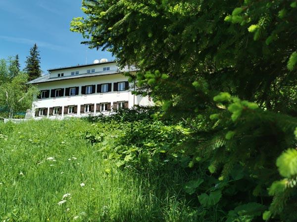Apartmaji DANDI - Jurgovo - Poletje