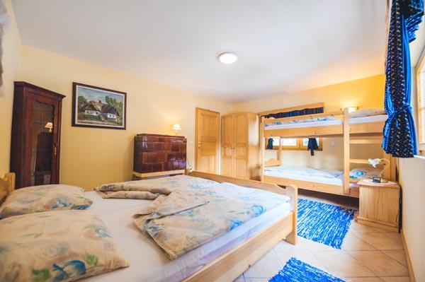 Apartmaji DANDI - Apartma 1 - Pohorska hiša 1