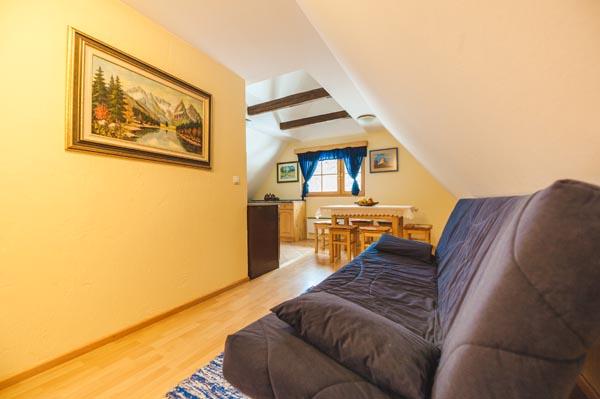 Apartmaji DANDI - Apartma 3 - Pohorska hiša 1
