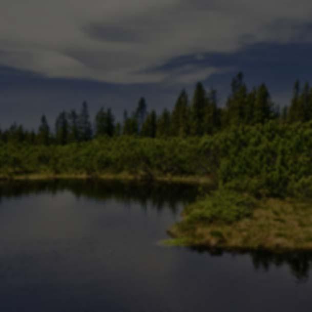 Lovrenška jezera - Apartmaji Dandi Rogla