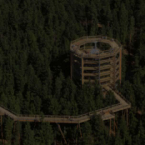 Razgledni stolp nad krošnjami - Apartmaji Dandi Rogla
